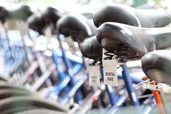 Rental bikes. Many rental bicycles displayed outdoors Stock Image