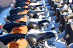 Rental bikes Stock Images