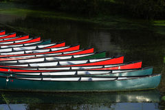 Rental boats anchored Stock Images