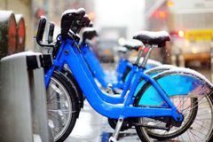 Rental city bikes covered with snow in New York Stock Images