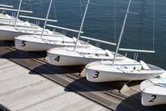 Rental Sailboats Stock Image