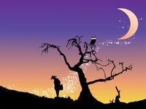 Rentrer à la maison la nuit étoile Photo libre de droits