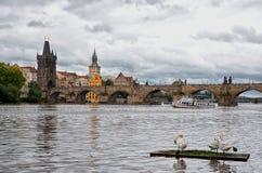 República Checa El barco en el río de Moldava en el fondo de Charles Bridge en Praga 17 de junio de 2016 Foto de archivo