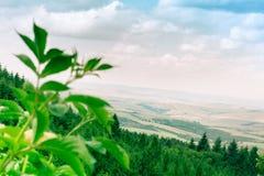 República Checa, Korycany - Moravia Foto de Stock Royalty Free