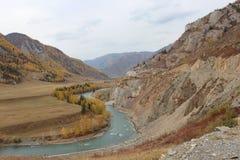 República de Altai Fotografia de Stock Royalty Free