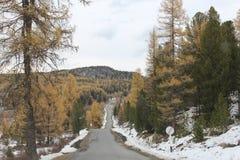 República de Altai Foto de Stock Royalty Free