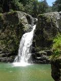 República Dominicana de la cascada de Jarabacoa Imagenes de archivo