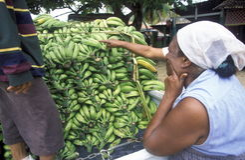 REPÚBLICA DOMINICANA DO MAR DE AMÉRICA CARIBBIAN Foto de Stock