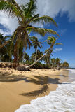 República Dominicana, Punta Cana Foto de archivo libre de regalías