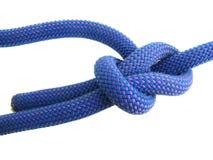 rep för pålstekklättringfnurra Arkivbild