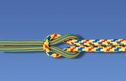 Rep på blå bakgrund Arkivfoto