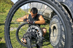 Repair  bicycle wheel Stock Photography