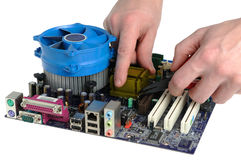 Repair of computer motherboard. On a white background Stock Photo