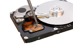 Repair hard disc. On white Stock Photography