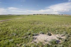 Repaire de Fox dans la prairie de Pawnee Photos stock