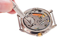 Repairer replaces battery in quartz watch. Repairing of watch - watch repairer replaces battery in quartz wristwatch isolated on white background Royalty Free Stock Images