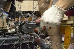 Repairerman repairing a bicycle wheel Stock Photos