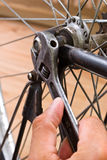 Repairing bike Stock Photo