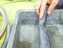 Repairing a flat tire of an bicycle tire. Patched up inner tube. Of an bicycle tire stock images