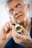 Repairing Old Bulb socket Stock Photography