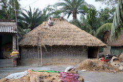 Repairing the thatched roofs Royalty Free Stock Photos