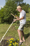 Repairing wooden rake in the garden Royalty Free Stock Images