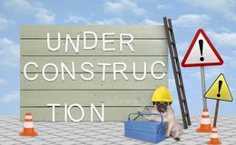 Repairman pug puppy dog with yellow safety helmet, sitting down next to wooden board sign, with text under construction royalty free stock images