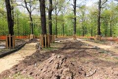Reparación de trayectorias en parques Protección de árboles en la reconstrucción de las áreas del parque Trabajos del material de imagen de archivo libre de regalías
