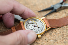 Reparation and restoration of watches Stock Image