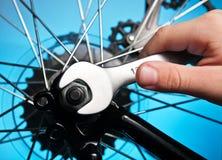Reparatur des Fahrrades Stockbilder