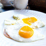 Repared Egg Royalty Free Stock Photo