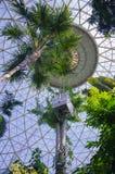 Reparera kupolerna Arkivbild