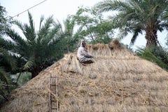 reparera thatched tak Royaltyfri Foto