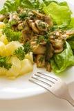 Repas de champignon de couche Photos stock