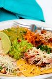 Repas de Taco de Carnitas image stock