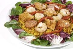 Repas espagnol de Paella servi le froid avec de la salade Photographie stock libre de droits