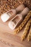 Repas et farine image stock