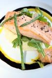 Repas gastronome des saumons Image stock