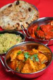 Repas indien de nourriture de cari Photos stock