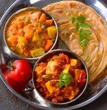 Repas indiens de veg photos stock