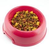 repas s de chat Photographie stock
