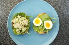 Repas sain Images libres de droits