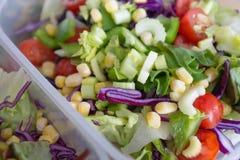 Repas végétal sain mélangé de salade dans le panier-repas Images libres de droits