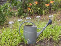 Repassez la boîte d'arrosage près du lit de fleur avec les daylilies oranges Photo libre de droits