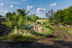 Repassez la merde et les déchets près de l'arbuste vert Milieu industriel et recyklation des déchets Déchets et corrosion photos stock