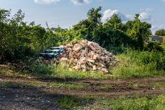 Repassez la merde et les déchets près de l'arbuste vert Milieu industriel et recyklation des déchets Déchets et corrosion photos libres de droits