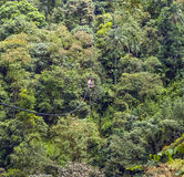 Repbro på Rio Mindo som är västra Fotografering för Bildbyråer