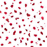 Repeatable лепестки розы и Bokeh Стоковое Изображение