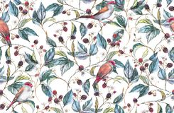 Repeated background, print for the textile and wallpapers. Hand-drawn watercolor seamless pattern with natural motives: blackberry branches, leaves, berries and Stock Images