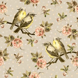 Repeated seamless swatch in sepia color. Birds, roses in peas Royalty Free Stock Image